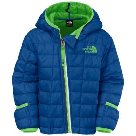 The North Face ThermoBall® Hooded Jacket (For Infants) in Monster Blue - Closeouts