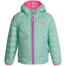 The North Face Thermoball Hooded Jacket - Insulated (For Toddlers) in Surf Green - Closeouts