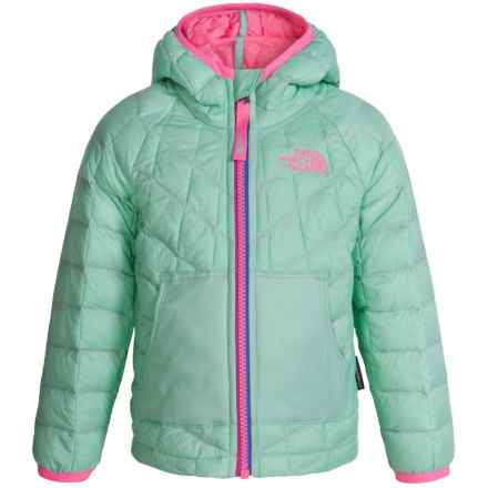The North Face ThermoBall® Hooded Jacket - Insulated (For Toddlers) in Surf Green - Closeouts