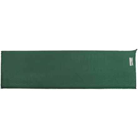 Therm-A-Rest Backpacker Plus Sleeping Pad - Self-Inflating, Regular in Green/Brown - Closeouts