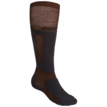 Thorlo Extreme Boarding Socks - Thermolite®, Over the Calf (For Men and Women) in Brown/Black - 2nds