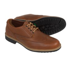 Timberland Stormbuck Brogue Oxford Shoes - Leather (For Men) in Red Brown - Closeouts