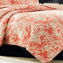 Tommy Bahama Reversible Orchid Retreat Quilt - Full-Queen, Prewashed Cotton in Coral - Closeouts