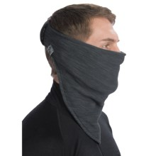 Turtle Fur Stria Necky Bandana Neckwarmer - Polartec® Thermal Pro® Fleece (For Men and Women) in Carbon - Closeouts