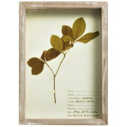 """Two's Company Botanical Art Print - 7.75x10.75"""" in Flowering Ash"""