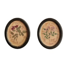 Two's Company La Rosa Vintage Botanical Wall Art - Set of 2 in The Fairy & The Mutabilis - Closeouts