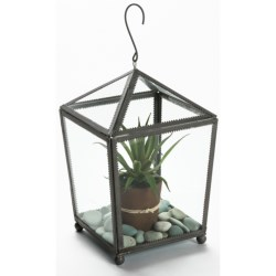 Two's Company Nature's Way Square Plant Terrarium in Glass / Iron