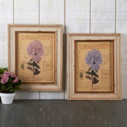 Two's Company Vintage Hydrangea Framed Prints - Set of 2 in Pink / Blue
