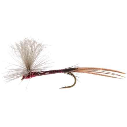 Umpqua Feather Merchants AB Isonychia Nymph Fly - Dozen in See Photo - Closeouts
