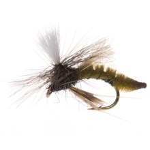 Umpqua Feather Merchants Spotlight Caddis Emerger Dry Fly - Dozen in Olive - Closeouts
