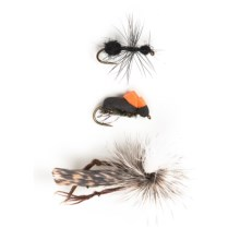 Umpqua Outdoors Terrestrial Assorted Flies - 6-Piece in See Photo - Closeouts