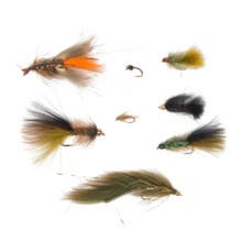 Umpqua Outdoors The Dam Assorted Flies - 16-Piece in See Photo - Closeouts