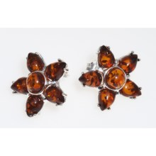 Vessel Star-Shaped Honey Amber Earrings (For Women) in Amber/Sterling Silver - Closeouts