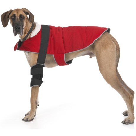 Warm Whiskers Pet Therapy Jacket with Hot/Cold Packs - XL, Reversible/Reflective in Black/Red