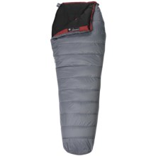 Wenger 45°F Visp Down Sleeping Bag - 800 Fill Power, Long Mummy in Grey - Closeouts