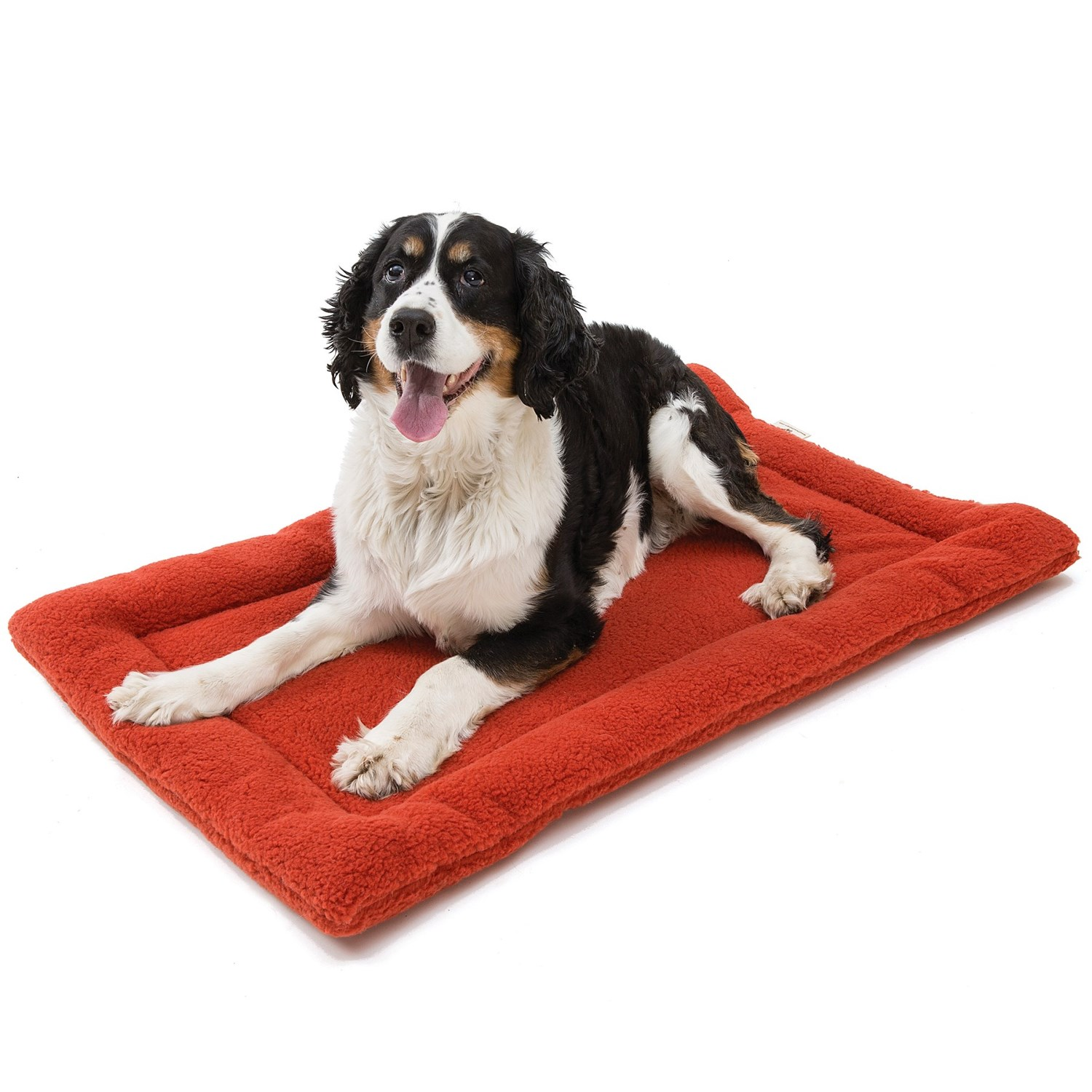 West Paw Dog Bed Reviews