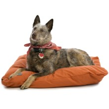 "West Paw Designs Pillow Dog Bed - 31x24"", Large in Pottery - Closeouts"