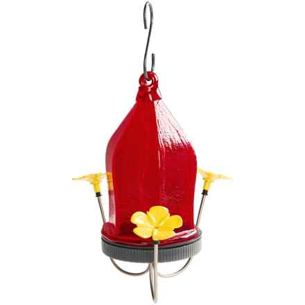 Wild Wings Red Crackle Bottle Hummingbird Feeder in Red - Closeouts
