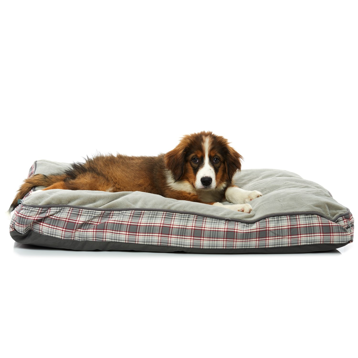 Woolrich Dog Decorative Pillow : Woolrich Aspen Plaid Gusset Pillow Dog Bed - 36x27?