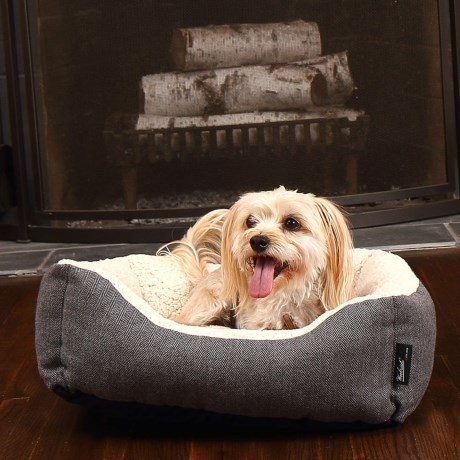 Cyber Monday Dog Bed Deals