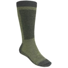 Woolrich Ski Socks - Merino Wool, Midweight (For Men and Women) in Iguana/Mist - Closeouts