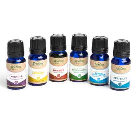 Woolzies Essential Oils - Set of 6 in See Photo - Closeouts