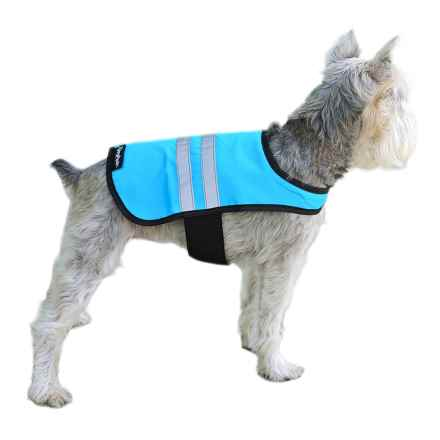 ZippyPaws Adventure Cooling Vest in Blue - Closeouts