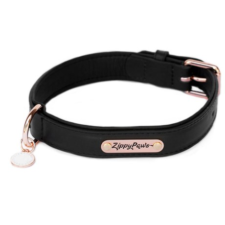 ZippyPaws Legacy Collection Dog Collar - Leather