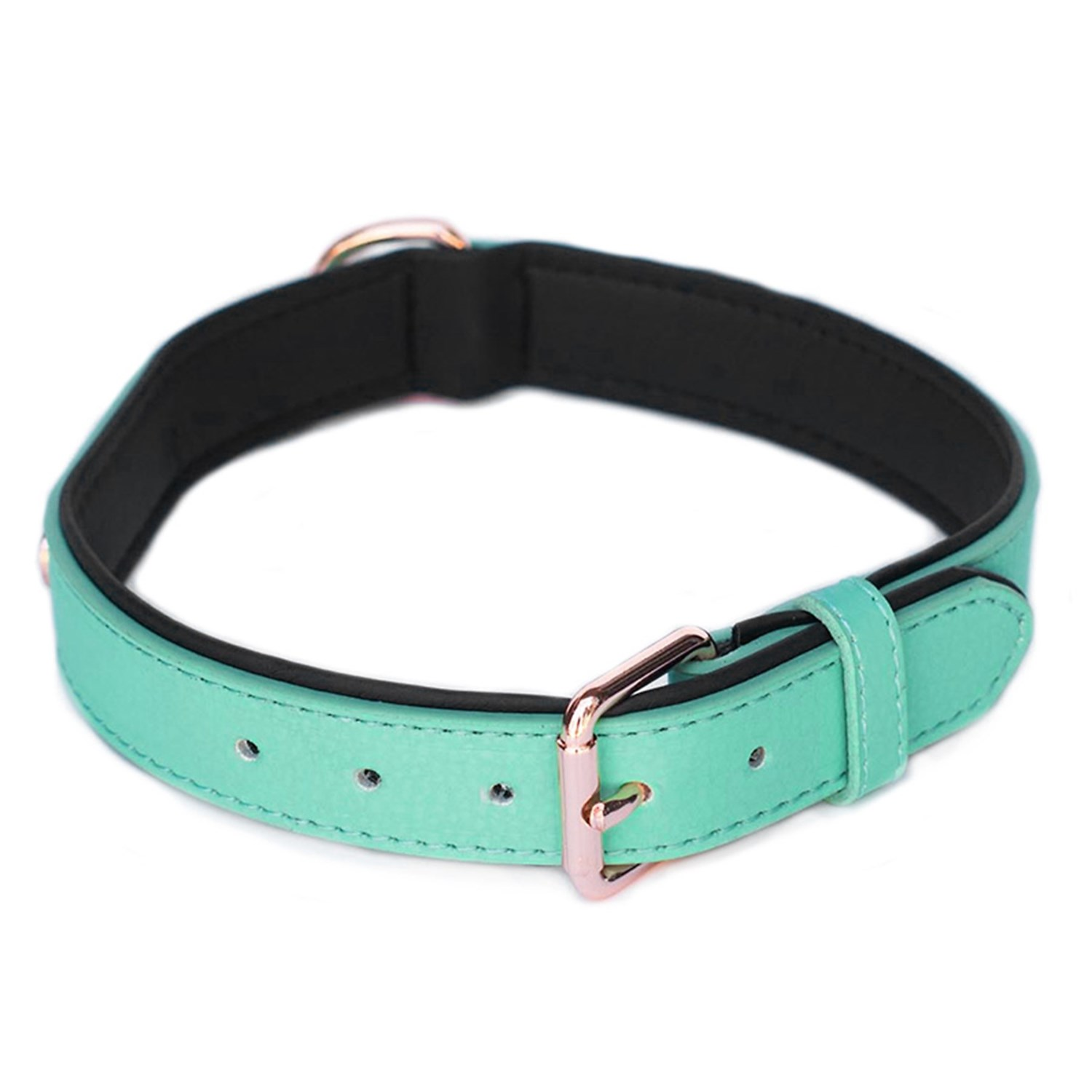ZippyPaws Vivid Collection Dog Collar - Leather